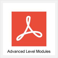 Advanced Level Modules