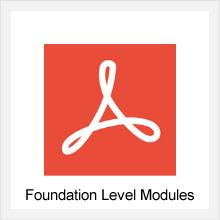 Foundation Level Modules